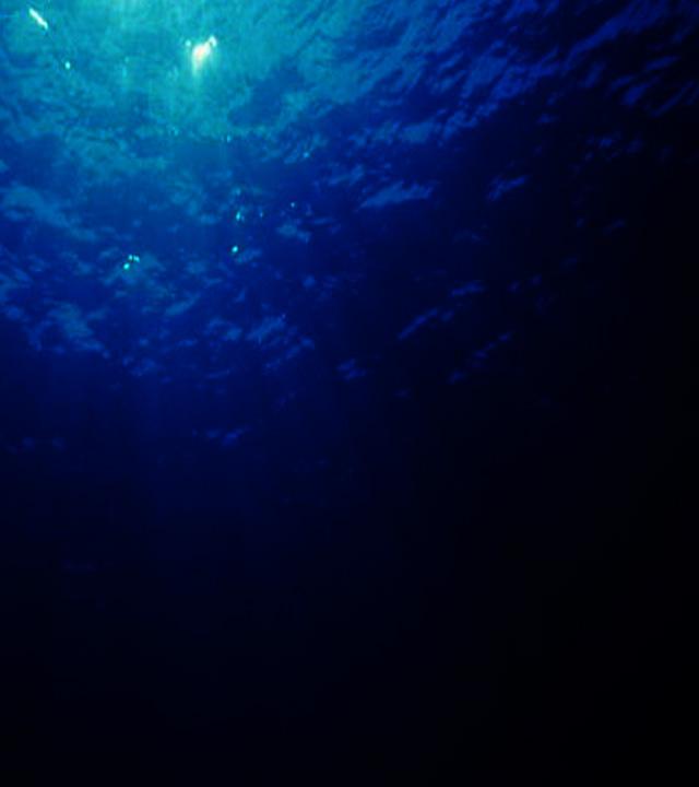 マシュマロ_海洋深層水